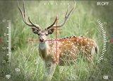 Pard NV008P Digitale Nachtrichtkijker 6,5-12x_